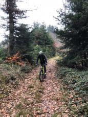 Brunch Ride